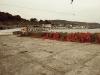 Dan Nott-Harbour Reach-Sim Bradley