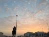 Regular-Al-Forsan-Sunrise