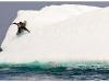parks_iceberg - cortese