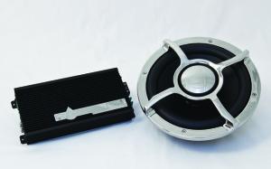 Subwoofer & Mono Amp Kit