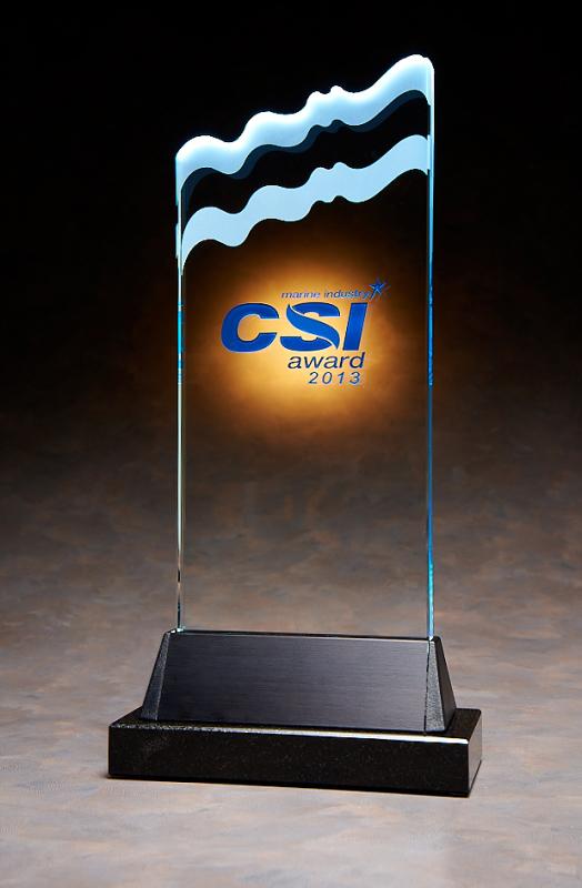 2013 CSI Award